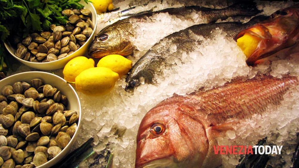 I 5 Migliori Ristoranti Dove Gustare Pesce A Venezia E Provincia Blog